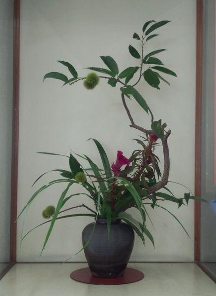 7月最後の駅の花