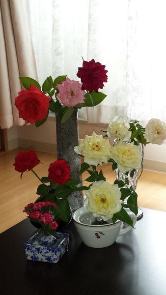 薔薇三昧!