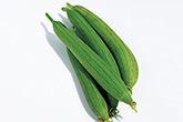 ウリ科の植物(科名から探す)   植物図鑑検索 - みんなの趣味の園芸 ...