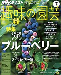 NHK 趣味の園芸 やさいの時間 56%OFF - fujisan.co.jp