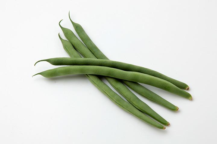 いんげん豆 育て 方