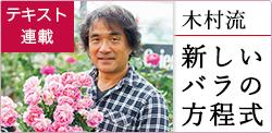 連載「木村流 新しいバラの方程式」第2回(2021年5月号)|トピック ...