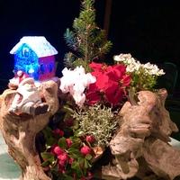 流木に植え込んだクリスマスの寄せ植え...