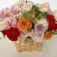 我が家で咲いたバラでプレゼント用に作...