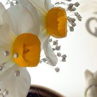 🎼房咲き水仙:我が家にて 葉は螺旋形だが...
