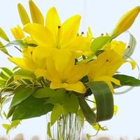花瓶花  春の日差しを受けて明るく輝い...