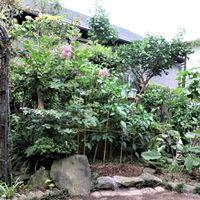 庭先では、動かせ出来ない大きな岩石を...