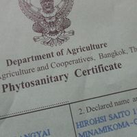 タイの植物検疫証明書です。