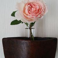 薔薇、一輪! 骨董の木の器で。