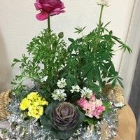 ザルに寄せ植えた花を 籠に入れて花籠に...