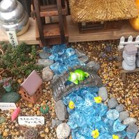 多肉ジオラマ『モアイ🗿村 収穫祭』④  水...