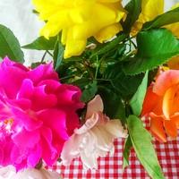 バラの生け花🌹