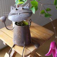 最後のプリンセスダイアナ 切り花にしま...