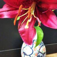 庭の百合を花瓶に 濃すぎるピンク😆