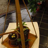 天秤棒に載せられた植物。 かつてはこの...
