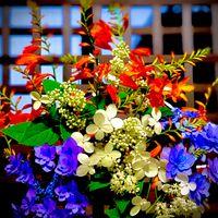 庭に咲く三種の🔴⚪️🔵お花飾ります 梅雨の...