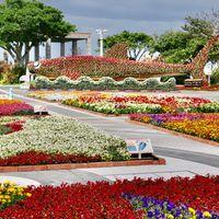 美ら海水族館の楽しいオブジェ 沖縄本島...