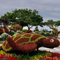 美ら海水族館の楽しいオブジェ 沖縄本島