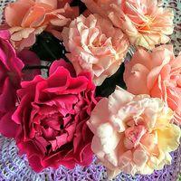薔薇の生花 シェエラザード、プシュケ