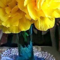 フリージアの生花