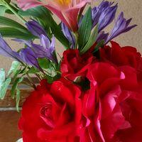 庭の花で生けました。 バラの真紅がキレ...