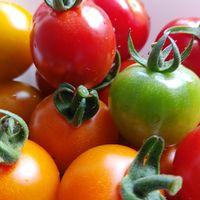 家庭菜園のミニトマト  キラキラ(∩^o^)⊃...