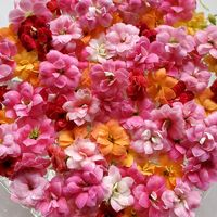 《八重咲きカランコエ》 01/10の切り花...