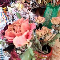 春の薔薇のドライフラワー