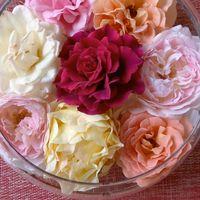 薔薇を最後迄楽しむ