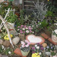 2015年2月の花壇