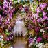 我が家の庭で咲いた花でアレンジフラワー
