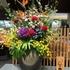 見つけた花々