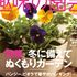 【お知らせ】わたしの花自慢・庭自慢に掲載