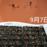 9月7日   種まき