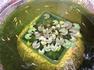 熱帯姫睡蓮の花が咲くまで