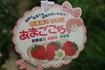 四季なりイチゴを購入 あまごこち