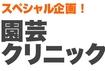 園芸クリニック~鉢花編~