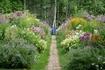 ガーデン巡り