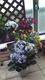 都会のベランダで花を育てる