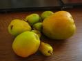 木瓜の実ジャム