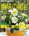 【テキスト発売情報】『趣味の園芸』『やさいの時間』『趣味の園芸ビギナーズ』1月号発売!