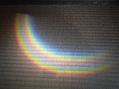 微笑む蕾と我が家の虹
