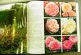 バラのカタログ