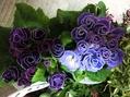 花と絵手紙