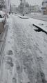 ゆき 雪 大雪