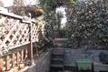 ガーデンフェンス白に塗り変え
