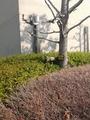 静岡県立武道館3