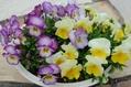 春…優しい色で❤