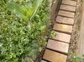 お庭のレンガ敷き