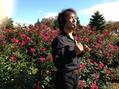 初めての京成バラ園